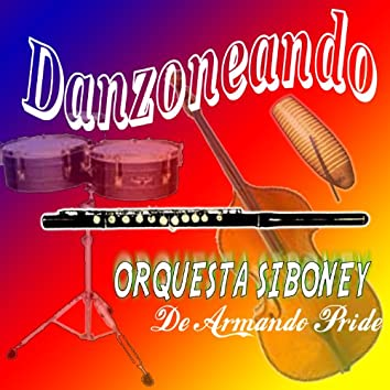 Danzoneando (Instrumental)
