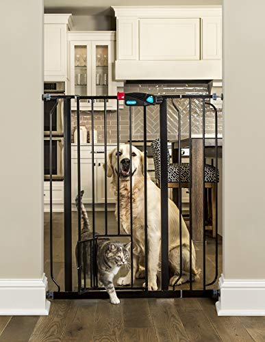 Carlson Extra Tall Walk Through Pet Gate with Small Pet Door, Includes 4-Inch Extension Kit, 4 Pack Pressure Mount Kit and 4 Pack Wall Mount Kit, Black
