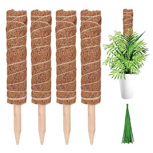 Wongfon Palo De Coir Moss, Coir Moss Totem Pole, Totem Pole para Extensión De Soporte De Plantas, Coir Moss Totem Pole para Trepar Plantas De Interior, Creepers, con 50 Piezas De Bridas