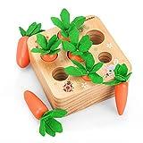 Fullove Juguetes Educativos para Bebés Montessori, Juguetes de Aprendizaje Preescolar para Niños...