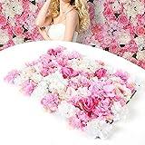 HaroldDol Mur de Fleurs artificielles 20x Rose Mur Floral DIY Décoration Soie Fleur Party, Panneau de Fleurs artificielles pour décoration de Mariage Jardin, Cadeau de Noël (40 x 60 cm)