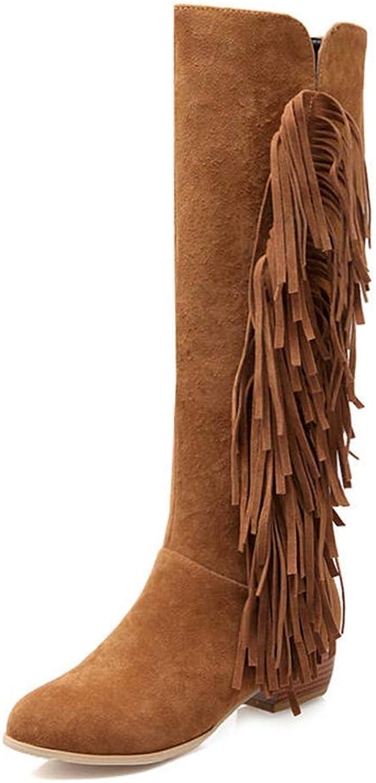 Webb Perkin Women Female Flock Round Toe Winter Boots Zipper Tassels Fashion Low Heel shoes Lady Knee High Boots