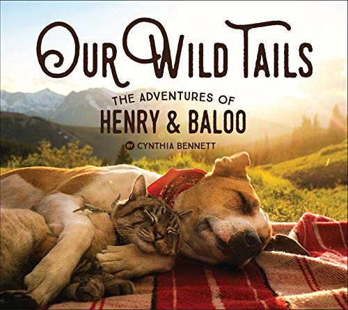 Our Wild Tails: The Adventures of Henry and Baloo