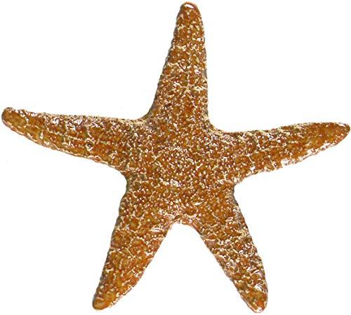 Artistry in Mosaics Mini Starfish Ceramic Swimming Pool Mosaic (5', Brown)