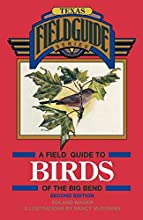 A Field Guide to Birds of the Big Bend