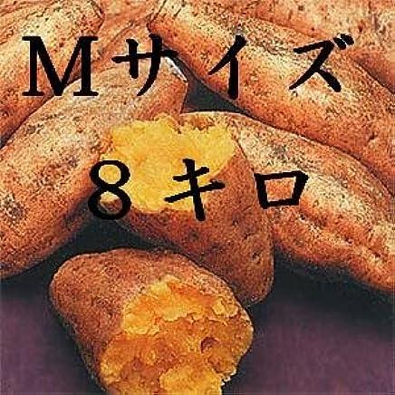 種子島安納芋 Mサイズ8キロ 安納紅