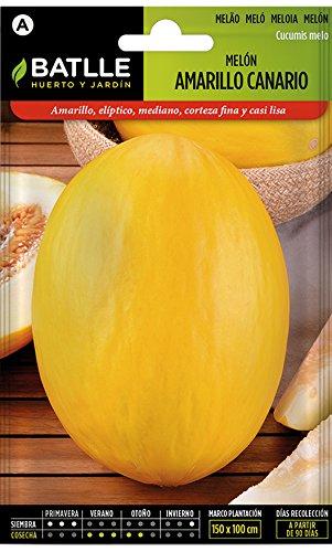 Batlle Gemüsesamen - Gelbe Honigmelone Canario (280 Samen)