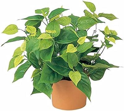 光触媒 人工観葉植物 光の楽園 ライムポトス 247B50
