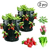 GOCOHHI Strawberry Planting Grow Bags, 2 Pack 10 Gallon Portable Breathable Waterproof Thickened PE Grow Bags with Handles for Harvesting Strawberries, Herbs, Flowers (Dark Green / 2 Packs)
