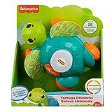 Fisher-Price Linkimals Tortuga sienta y gatea, juguete para bebés con luces y sonidos +9 meses (Mattel GXK31)