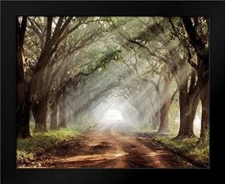 Best evergreen plantation framed print Reviews