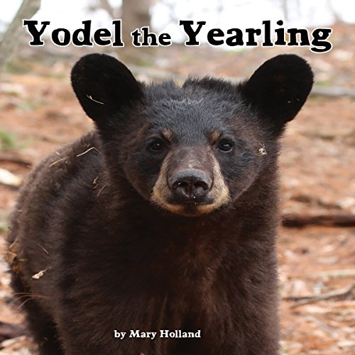 Yodel the Yearling copertina