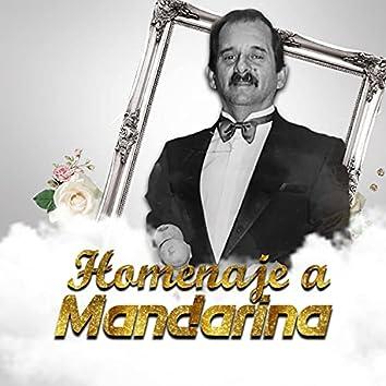 Homenaje A Mandarina