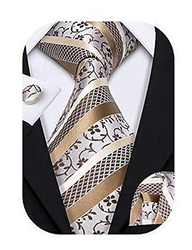 Barry.Wang Fashion Men s Silk Necktie Set Novelty,Khaki,One Size