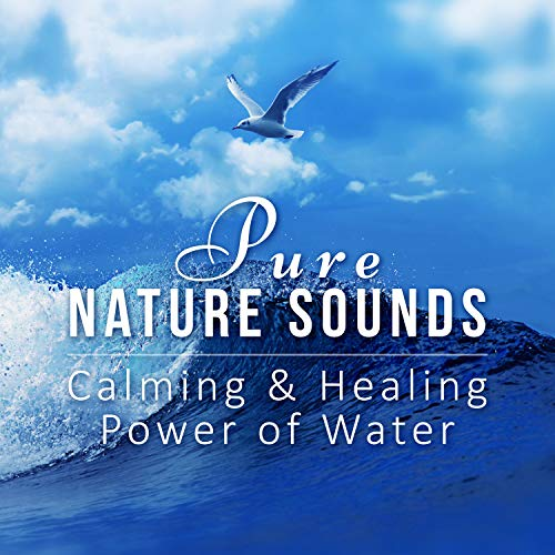 Waves Crashing on the Shore, Sounds for Relaxation