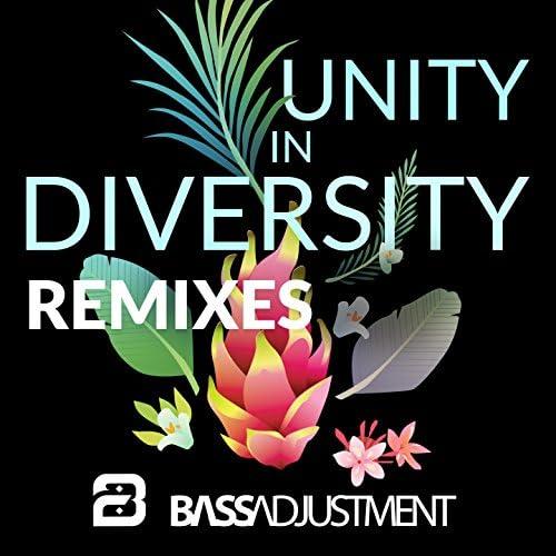 Bass Adjustment feat. J-BiRD The Straybird