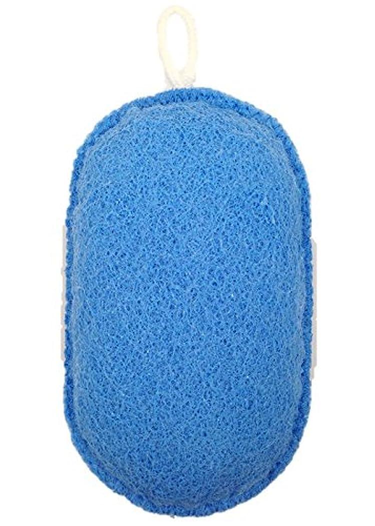 雰囲気振り子グループオーエ ボディスポンジ ブルー 約縦14.5×横9.5×奥行5cm nf ヘチマボール 体洗い 泡立ち