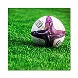 Sport Rugby Ball Field World Cup Photo Premium Wall Art Canvas Print 24X24 inch Ballon Champ Monde Photographier Mur