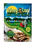Best Sugar Substitutes - Whey Low Sweetener Granular 32 Ounce - Sugar Review