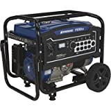 Powerhorse Portable Generator - 11,000 Surge Watts, 8400 Rated Watts, Electric Start