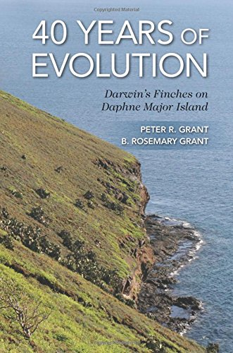 Grant, P: 40 Years of Evolution: Darwin's Finches on Daphne Major Island