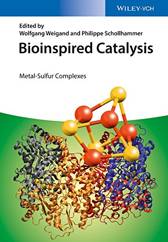 Bioinspired Catalysis: Metal-Sulfur Complexes (English Edition)