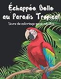 Échappée belle au paradis tropical - Livre de coloriage pour adultes: 20 beaux dessins de coloriage uniques et détaillés sur le thème des tropiques ... art thérapie, relaxation et anti stress.