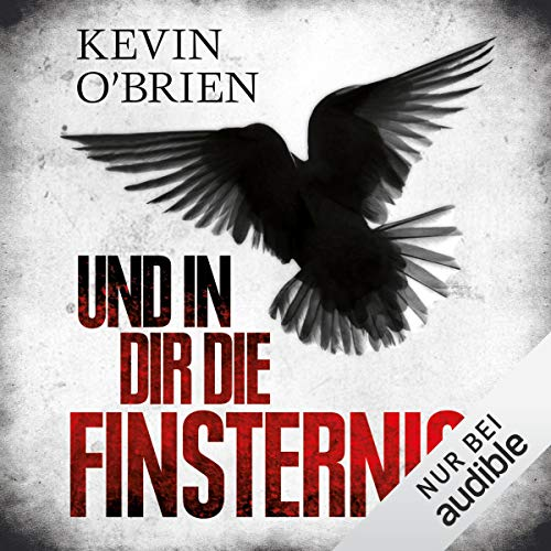 Und in dir die Finsternis audiobook cover art