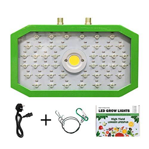 Greatangle Piante LED Coltiva la Luce Spettro Completo 1000W Doppio Chip Luce Rossa/Blu/UV/IR ad Angolo Obliquo Lungo per Piante da Interno Veg Bloom