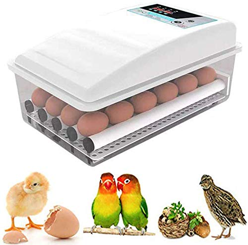 Incubator incubator incubator, broedeieren kip eenden ganzen eieren, incubator, incubator temperatuur, broedmachine eieren automatisch uitschakelen,16eggs