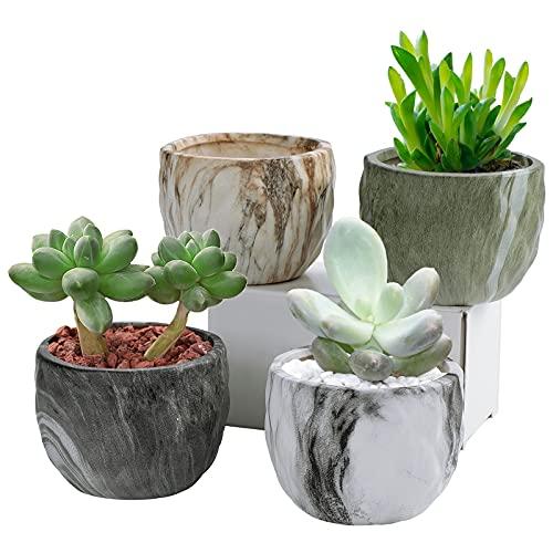Coolty 4pcs Mini Maceta Suculenta de Cerámica, Cactus Suculentos Bonsái Maceta para Decoración del Hogar y la Oficina Regalo, 8.5CM