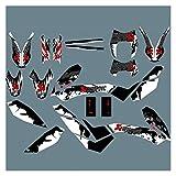 Wjyfexble Pegatina de calcomanías de Fondo gráfico de Motocicletas para KTM SMCR690 SMC 690 2011-2008 WYJHN (Color : Blue)