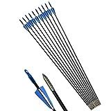ZSHJG 12pcs Fiberglaspfeile 31 Zoll Bogen und Pfeile für Bogenschießen Schießübungen Bogenpfeile für Recurvebogen