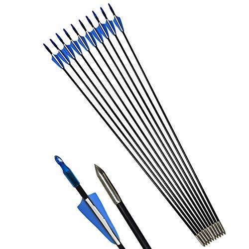 ZSHJG Tiro al Arco Flechas de Fibra de Vidrio 31'Flechas de Práctica de Tiro para Compuesto Recorvar Arco 12 Piezas (Azul)
