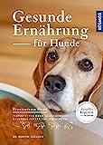 Gesunde Ernährung für Hunde: Fertigfutter oder selbstgemacht - gesundes Futter für jeden Hund