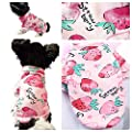 "Pretty Pampered Pets XS S Small Chihuahua Clothes Clothing Puppy Dog Tshirt Pink Girls Strawberry Sweater Jumper Coat (XS 8"")"