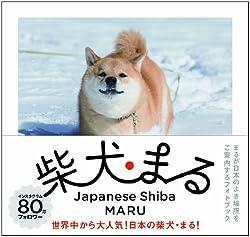 小野慎二郎 '柴犬まる'
