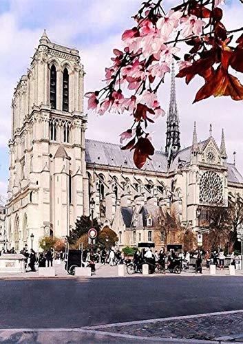 Kit de punto de cruz con diamantes numeros 5D y diseño de Notre Dame de Paris,diamond painting kit cuadros a punto de cruz para manualidades y decoración de hogar decoración para iglesias 30x40cm