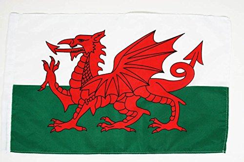 AZ FLAG Flagge Wales 45x30cm - WALISISCHE Fahne 30 x 45 cm - flaggen