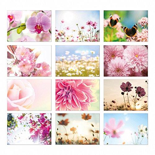 2 x 12 neutrale Blumen Postkarten I dv_314 I DIN A6 I 24er Set Grußkarten Natur-Motive Schmetterling I zum Beschreiben und Versenden