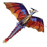 Walmeck Kite - Drachen Kinderdrachen Fliegen für Kinder und Erwachsene