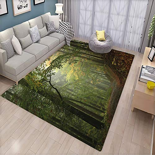 Forest Pet Floor mat Misty Autumn Forest with Shaded Trees Foggy Dreamy Woodland Scene Patio Door Floor mat Non-Slip Decoration 6'x8' Olive and Reseda Green Brown
