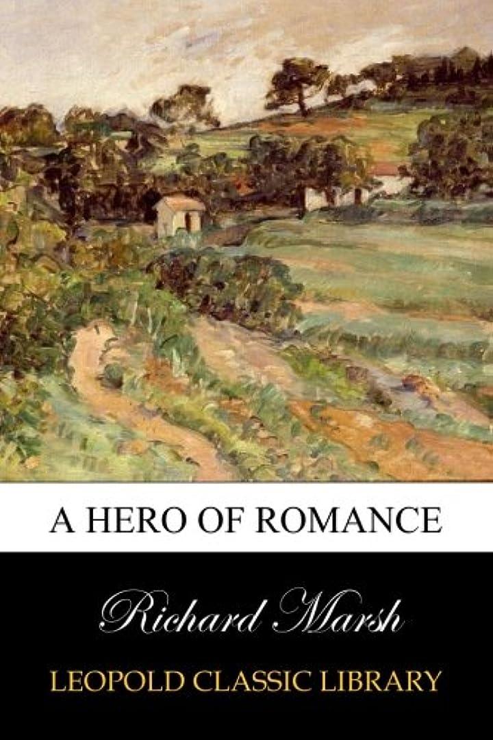 ぬるい杭私のA Hero of Romance