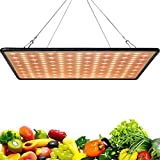 Greensindoor LED Grow Lights for Indoor Plants,300W Upgrade Sunlight Plant Lamp for Indoor Plants Seedling Vegetable and Flower (1pc)