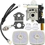 Dalom SRM 210 Carburetor w Fuel Line Primer Bulb for Echo Weedeater SRM210 SRM211 GT200 GT201 PE200 PE201 SRM210U SRM210SB SRM211U SRM211SB HC150 HC151 SHC210 SHC211 Trimmer Parts