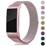 Onedream Correa Compatible con Fitbit Charge 3,Charge3 Pulsera Rosa para Mujer Hombre Acero Inoxidable Metalico Recambio Accessorios Strap (sin Reloj),S