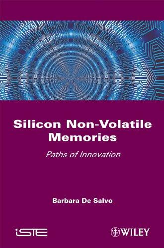 Silicon Non-Volatile Memories: Paths of Innovation (English Edition)