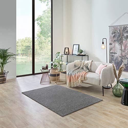 Carpet Studio Ohio Alfombra Salón 115x170cm, Alfombras para Sala, Comedór & Dormitorio, Fácil de Limpiar, Superficie Suave, Pelo Corto - Platino/Gris