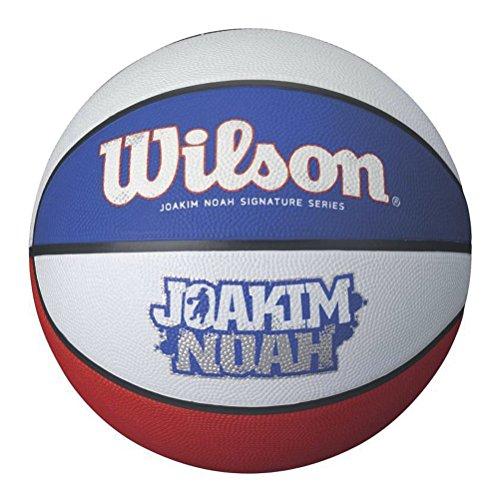 Wilson Joakim Noah Tricolour Pallone da Pallacanestro