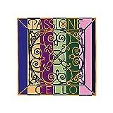 Pirastro 349420 PASSIONE Bass (Orchestra) E-4 medium